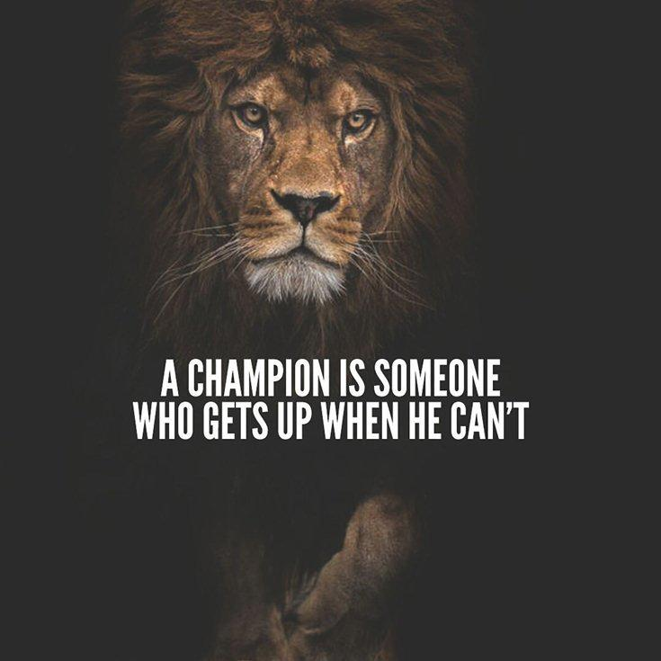 342 Motivational Inspirational Quotes About Success 11