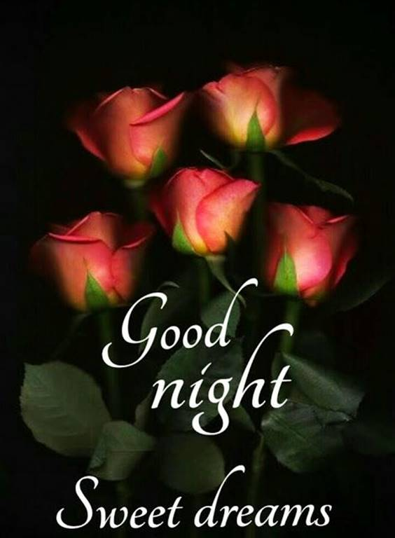 Wish You A Good Night