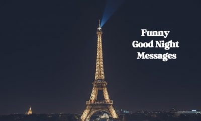 Funny Good Night Messages with Wishes Greetings Pictures