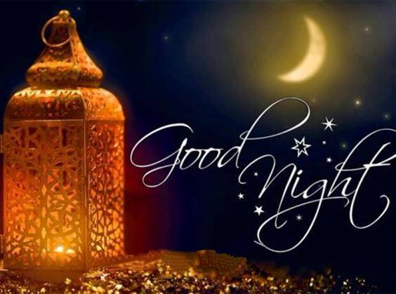 beauty of the night quotes
