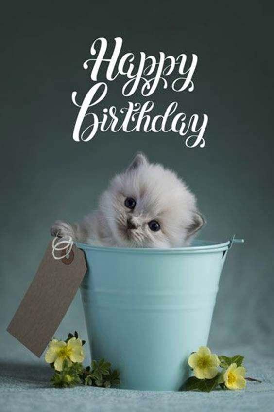 happy birthday message 1