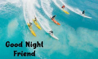 Good Night For Boyfriend with Wishes Greetings Pictures