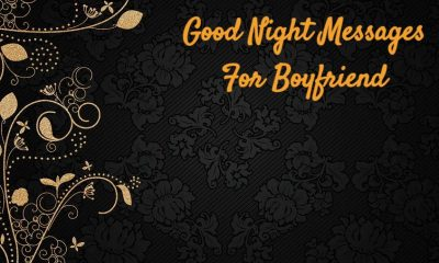 Good Night Messages For Boyfriend with Pictures And Quotes