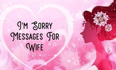 Best Im Sorry Messages For Wife – Sweet and Romantic