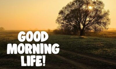Beautiful Good Morning Life Images Quotes And Good Thoughts