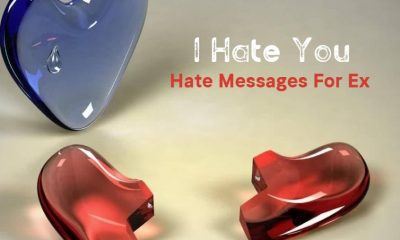 I Hate You Messages For A Hated Person Attitude Quotes For Ex